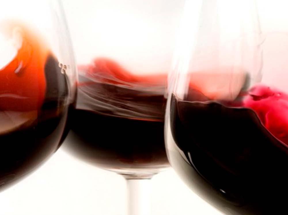 Bodegas Sangre de Ronda – Centro de interpretación de vinos
